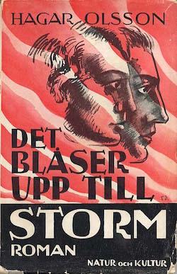 Bokomslag hagar_olsson_blaser_upp_till_storm_dixikon.se